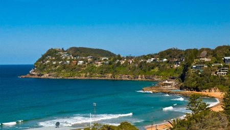 Enjoy a Coastal Getaway at Whale Beach