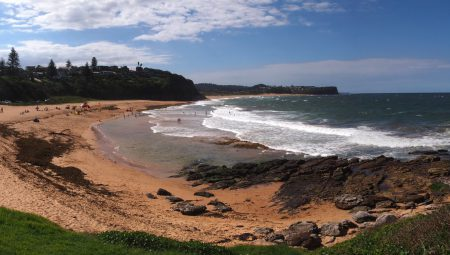 5 Reasons to Visit Warriewood Beach, Northern Beaches